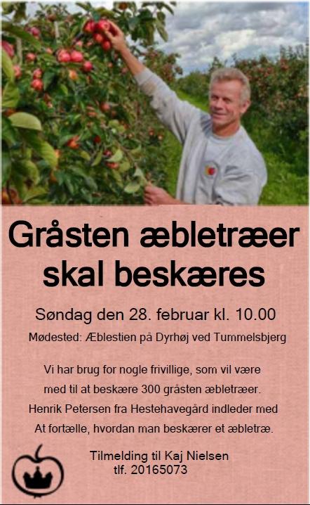 æblebeskæring_annonce